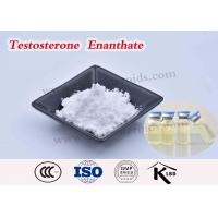 China Test Enanthate 250 Testosterone Enanthate Injectable Steroids USP Grape Seed Oil wholesale