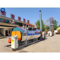 China 1-20 Ton Per Hour Industrial Oil Gas Fired Package Steam Boiler for Steam Sterilizer wholesale