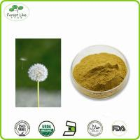 China High Quality pure natural Dandelion root powder on sale