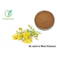 China Brown Yellow Powder HPLC UV 3% Hypericin St John's Wort Extract powder wholesale