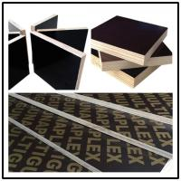 China good quality 12mm 15mm 18mm shuttering plywood/finger joint shuttering plywood in hot sale wholesale