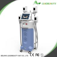 China Low Price Cryo Coolsculpting machine, Hot Sale in Europe, America and Oceanica on sale