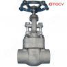 China Alloy Steel Globe Valve, BB, WB, 800-2500LB TECV wholesale