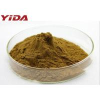 China Natural Pentaphyllum Tea Gynostemma Extract Powder 99% Anti Aging Anti Cancer wholesale