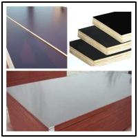China hot sale waterproof construction plywood/18mm construction plywood for concrete formwork wholesale