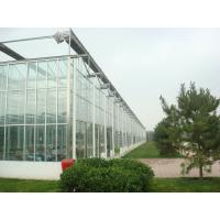 China Exquisite Aluminum Frame Glass Greenhouse Gutter Height 3.0m-6.0m Easy Assemble wholesale