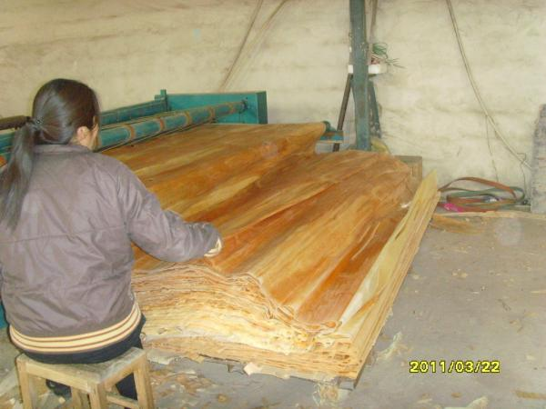 Quality Furniture Birch Wood Veneer for sale