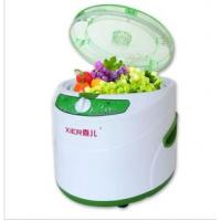 Intelligent digital or manual Ozone Fruits and Vegetable Washer