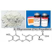 China CAS 51-48-9 Weight Loss Steroids Pro-hormone Powder L-Thyroxine(T4) wholesale
