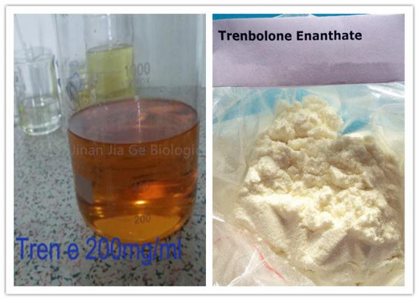Quality Injectable Anabolic Steroids Trenbolone Enanthate Injection 200mg / Ml CAS 472-61-546 for sale