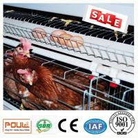 China Battery Layer Chicken Cage Poultry Automatic Equipment Ventilation System on sale