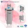 China Cryolipolysis slimming machine wholesale