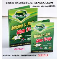 China High quality and cheaper mouse glue trap mouse rat trap  Email: rachel@bjgreenleaf.com wholesale