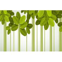 China Green Leaf Bamboo Fiber Waterproof Wall Panels For Bathrooms / Living Room wholesale