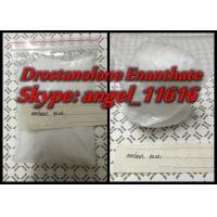 White Powder Masteron Enan Drostanolone Steroid Drostanolone Enanthate 150MG / ML