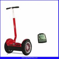 China Electric Vehicle 2 Wheel standing up electric scooter segway wholesale