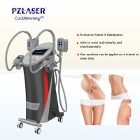 China CE Cool Tech Cryolipolysis Fat Freeze Slimming Machine For Weight Loss wholesale