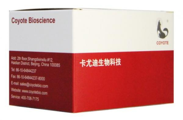 Quality One-step Detection Kit for Hepatitis B virus (QPCR-Probe) for sale