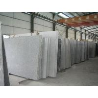 China Granite Slab wholesale