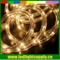 China led neon light dimmer warm white 2 wire christmas rope lights wholesale