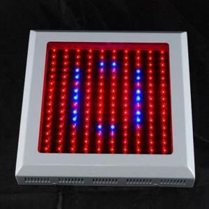 China Square LED Plant Growing Lights Ra 80 , 150 Watt Epistar Grow Light wholesale