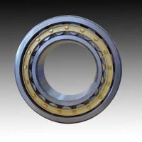 China Double Row Cylindrical Roller Bearings wholesale
