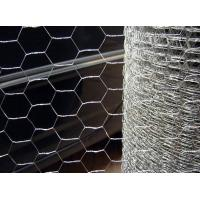 China Chicken Hexagonal Wire Mesh PVC Coated Galvanized Gabion Box Iron Wire Material on sale