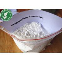 China Muscle Growth Steroid powder Drostanolone Enanthate for muscle mass CAS 472-61-1 wholesale