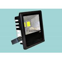 China High Lumen External LED Flood Lights 30W Long Life Span For Landscape wholesale