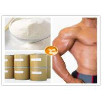 China Safe Test Sustanon 250 , Quick Efficient Sustanon Injection For Bodybuilding Test D on sale