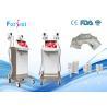 China Máquina ausente da beleza do emagrecimento da melhor gordura fria Célsio máxima da barriga do gelo do chamgane da máquina da lipólise -15 wholesale