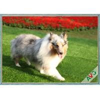 China UV Resistant Dog Pet Artificial Turf / Synthetic Grass Eco Friendly Installation wholesale