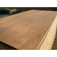 China packing plywood / commercial plywood / furniture plywood on sale