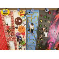China Freestanding Plastic Rock Climbing Wall , Safe Kids Outdoor Climbing Wall wholesale