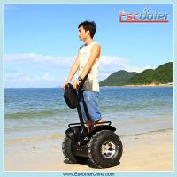 China resort cart electric two wheels self balancing scooter wholesale
