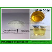 China Testosterone Propionate Test P Powder Supplement For Bodybuilder CAS 57-85-2 wholesale