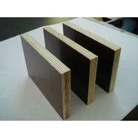 China 9mm 12mm 15mm 18mm 21mm brown film black film faced plywood marine plywood shuttering plywood wholesale