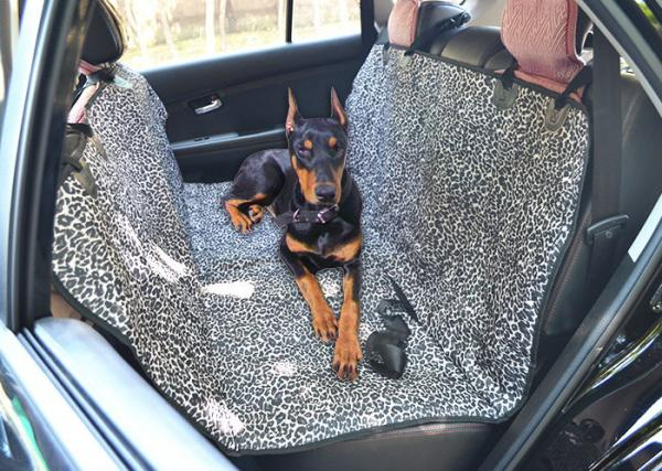 Custom Leather Seats Images