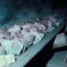 China High Temperature Resistant Conveyor Belt wholesale