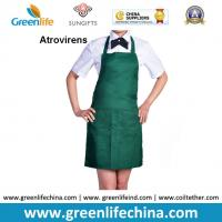 China Atrovirens dark green fashion color advertising cheap good apron with 2pcs front pockets wholesale