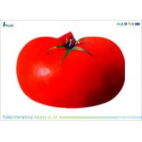 China Red Apple Shape EVA Foam Kneeling Pad Heat Transfer Printing on sale
