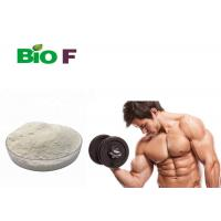 China Boost Muscle Growth Natural Nutrition Supplements MK 2866 Prevent Muscle Wasting wholesale