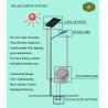 China Standard LED solar lighting pole wholesale