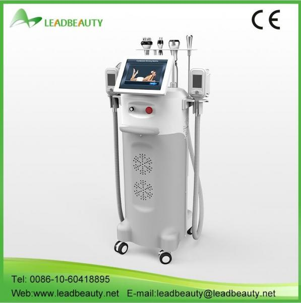 Quality 3 different size handles 12inch fat freeze cryolipolysis beauty slimming machine for sale