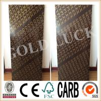 China Qingdao Gold Luck 1220x2440mm Poplar Core Brown Film Faced Plywood on sale