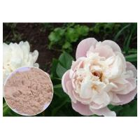 China Peony Root Powder Natural Anti Inflammatory Supplements Water Solvent CAS 23180 57 6 on sale