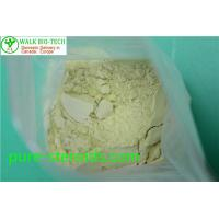 China Slightly Yellow Trenbolong Powder Trienolone Trenbolone Base For Bodybuilding wholesale
