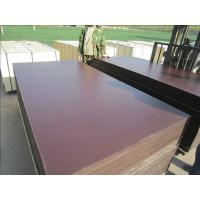 China Film Faced Plywood, Structure Plywood, Concrete Plywood wholesale