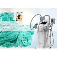 China Cryotherapy Fat Freezing Machine With Ergonomic Hand Pieces User Friendly on sale
