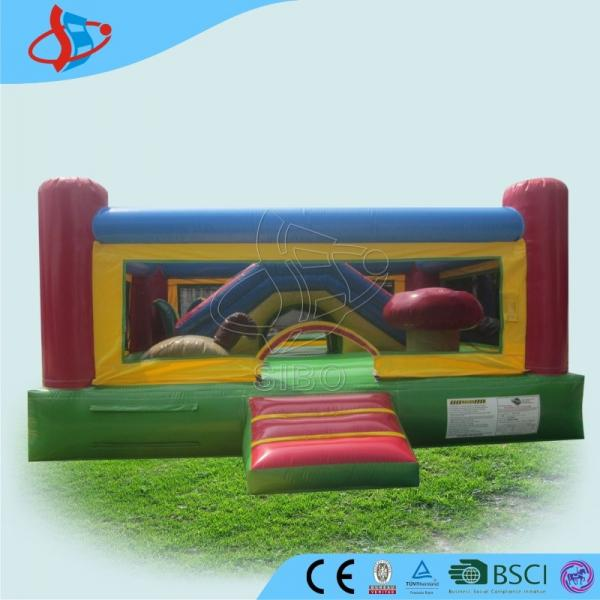 Inflatable Everest Slide: Children Rain Gear Images